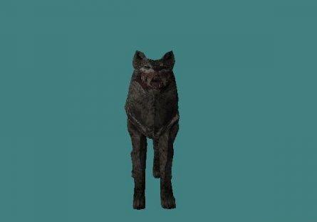 zp_wolf